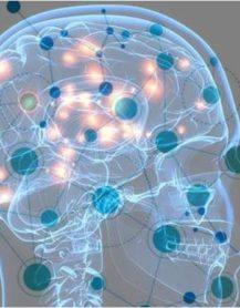 AI SON self driving cellular network